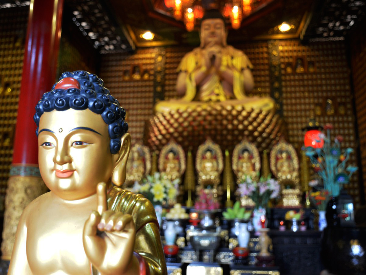Temple of 1000 buddas Things to do in Ho Chi Minh Double-Barrelled Travel