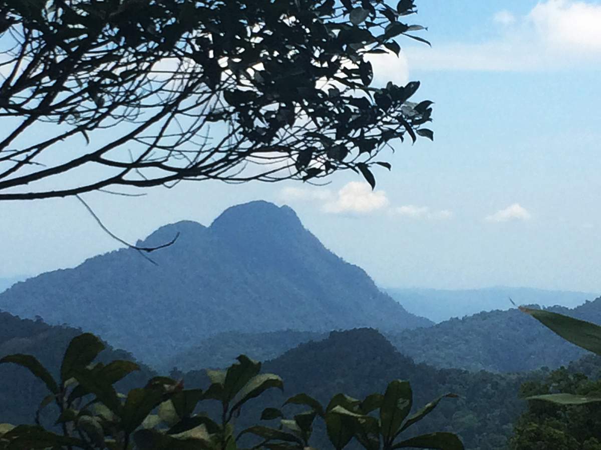 Things to do in Borneo Mt Kinabalu park Double-Barrelled Travel