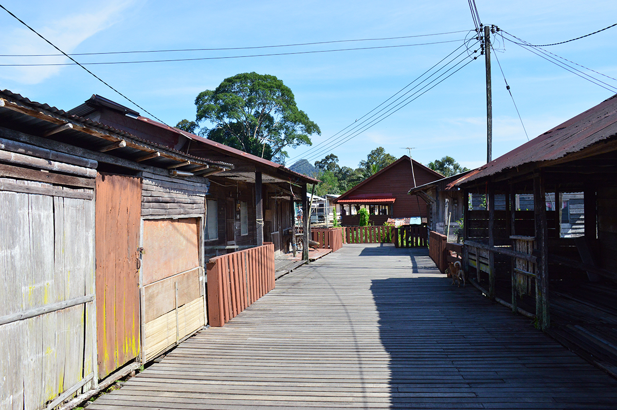 Things to do in Longhouses Double-Barrelled Travel