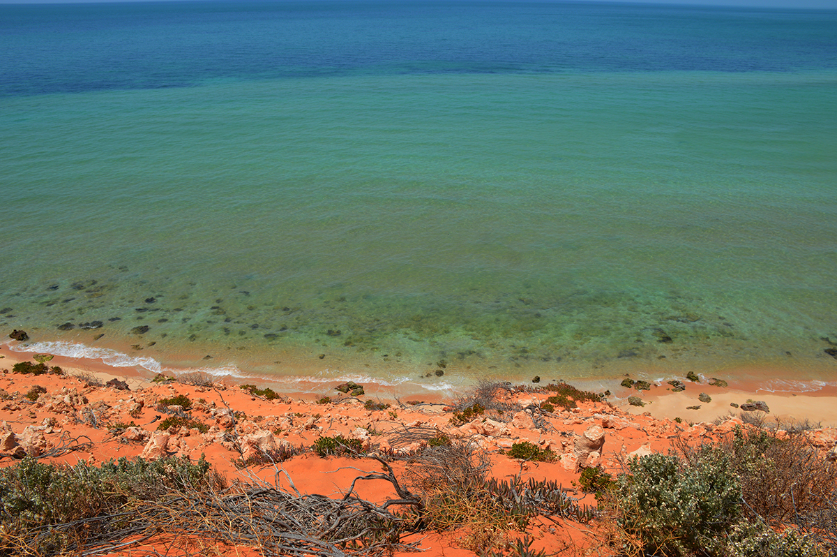 The crystal clear waters of Francois Peron National Park