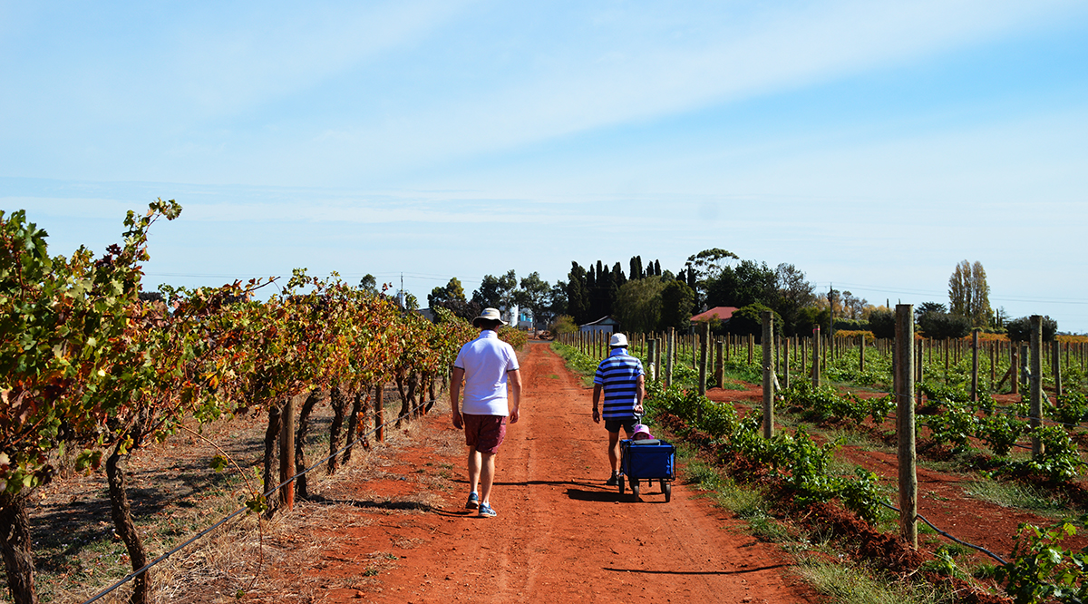 Beach cart Coonawarra Double-Barrelled Travel