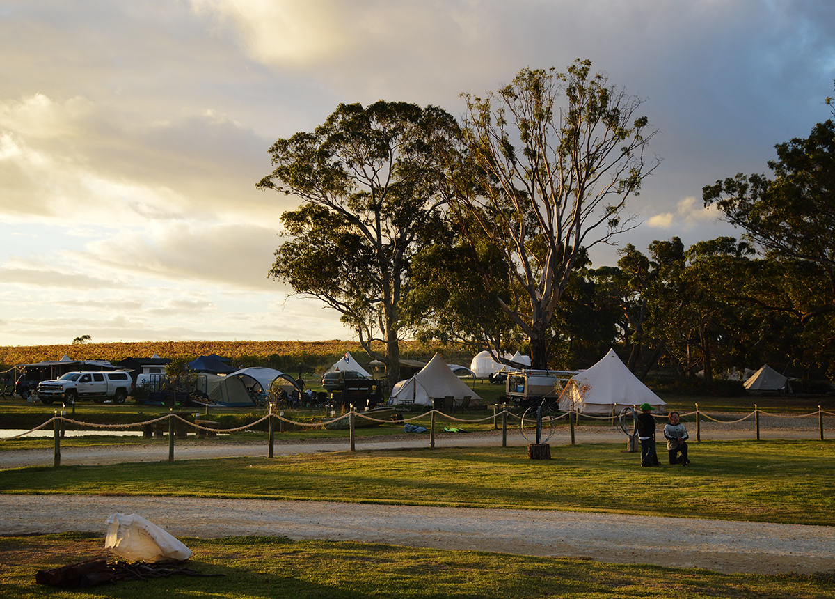 Coonawarra Bush Campground Double-Barrelled Travel