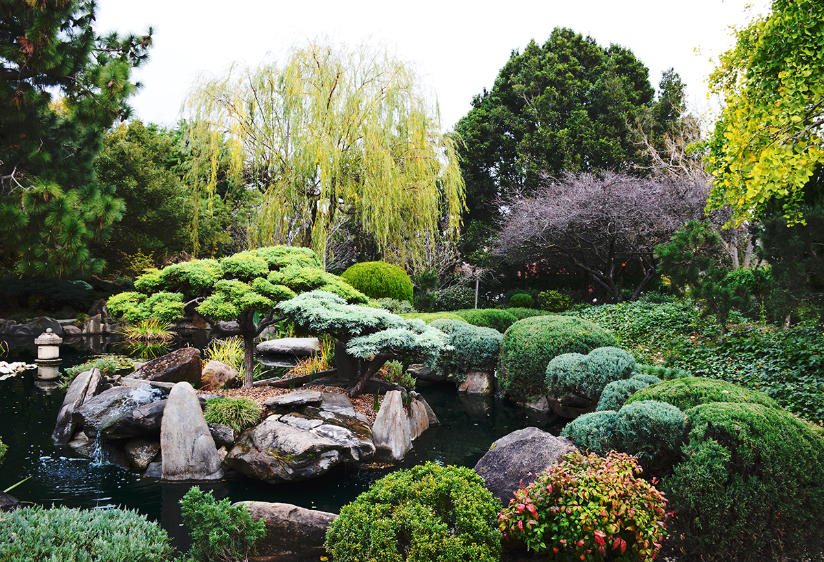 Japanese garden day out in Adelaide Double-Barrelled Travel