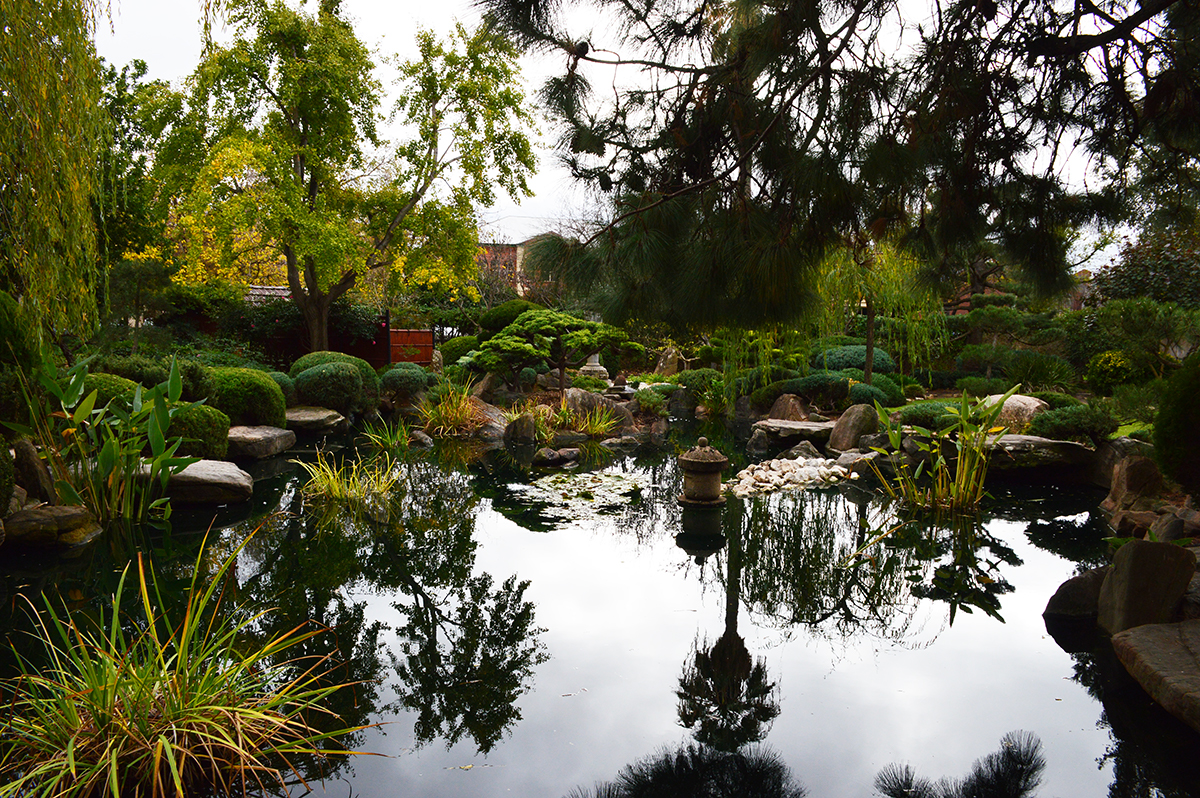 Japanese garden lake Double-Barrelled Travel Adelaide