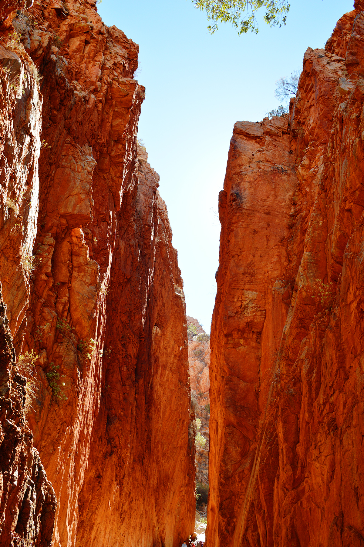 Standley Chasm Double-Barrelled Travel