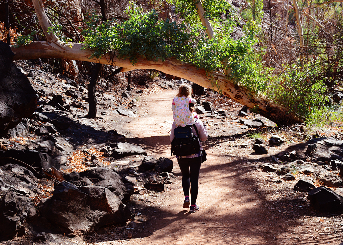 Walk to Standley Chasm West MacDonnell Double-Barrelled Travel