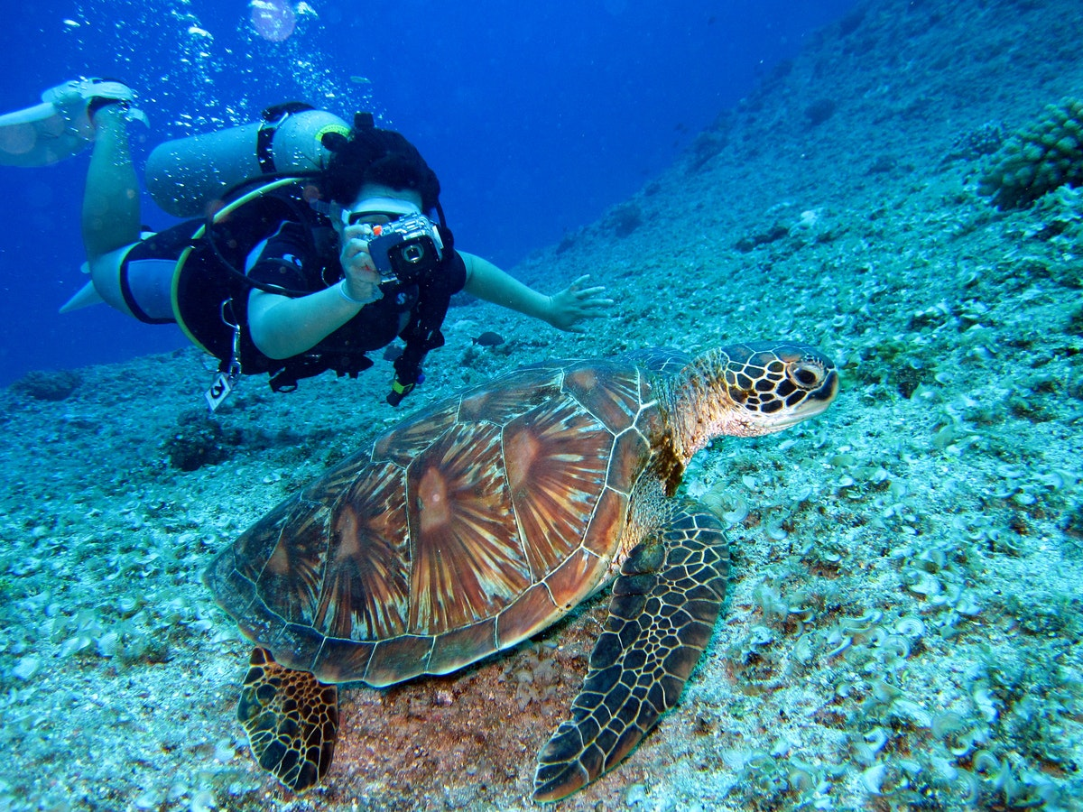 scuba diving on your travels